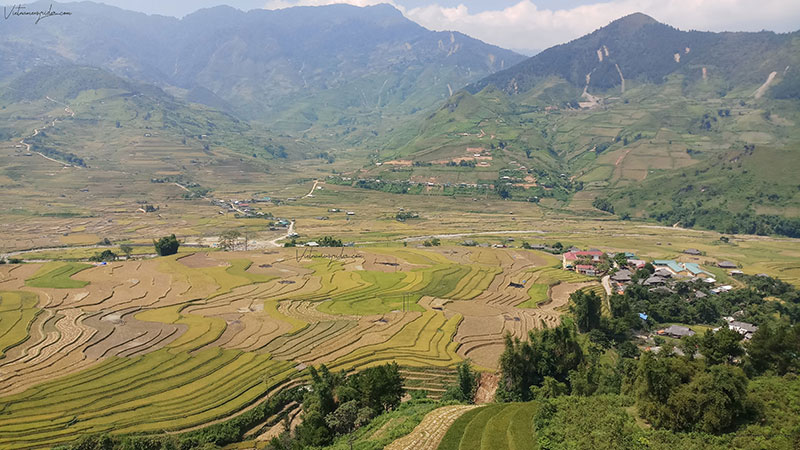 EXPERIENCE TO TRAVEL TO MU CANG CHAI- THE MOST STUNNING TERRACE RICE FIELDS